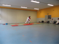 08 - Julian Hosinsul 2.png